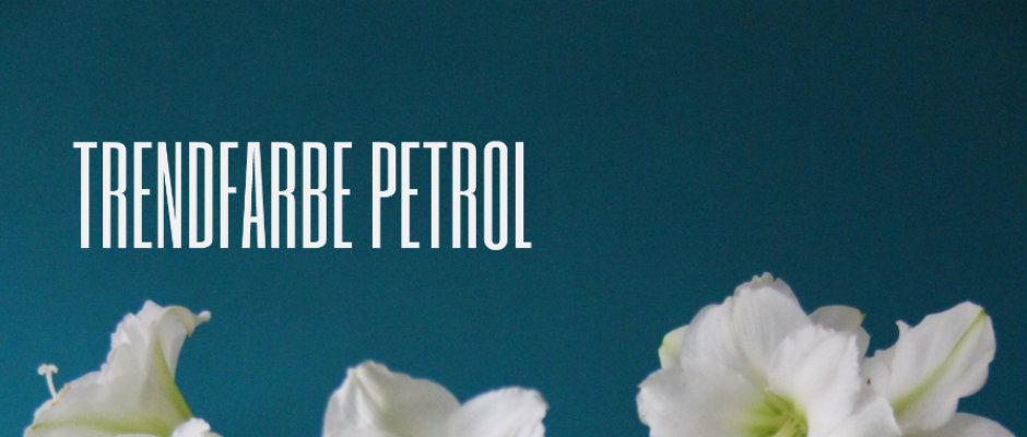 Wand Petrol trendfarbe petrol plus size mode models magazin
